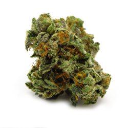 Trinity Cannabis Strain