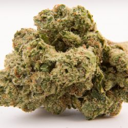 Triangle Kush Cannabis Strain