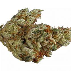 Voodoo Cannabis Strain