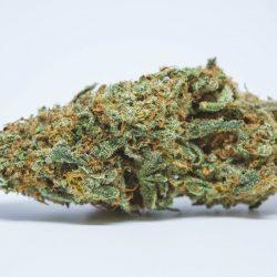 Vortex Cannabis Strain