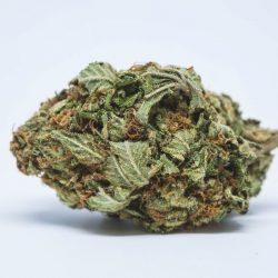 Whitewalker OG Cannabis Strain