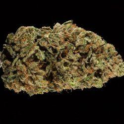 Josh D OG Cannabis Strain