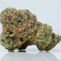Pineapple Express Cannabis Strain