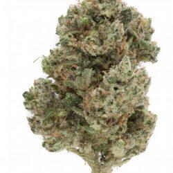 Hades Haze Cannabis Strain
